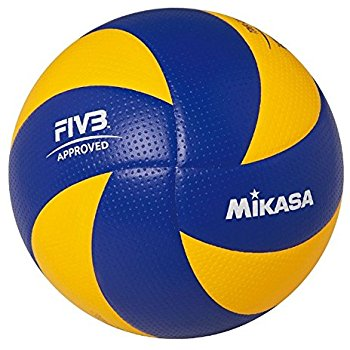 Volleyball Ball 1